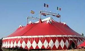 Le Cirque Zavatta 060915063631110479