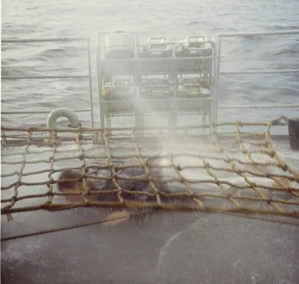 [ Les traditions dans la Marine ] LE PASSAGE DE LA LIGNE - ÉQUATEUR (Sujet unique) 061115024118212247