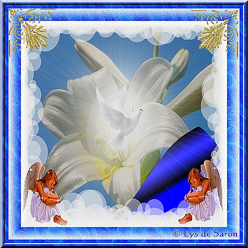 fleurdelysdesaron