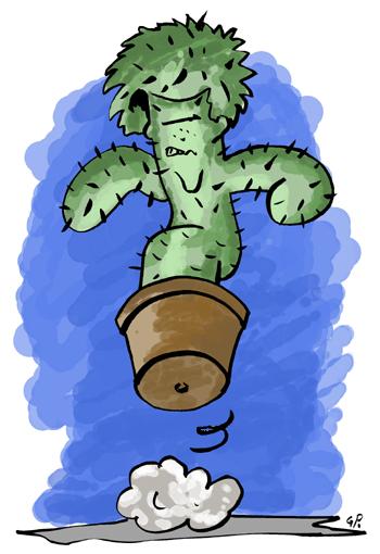 Cactus !