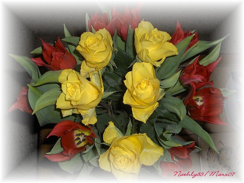 Soleil Rouge... dans Passion Fleurie 0703210748374291406768