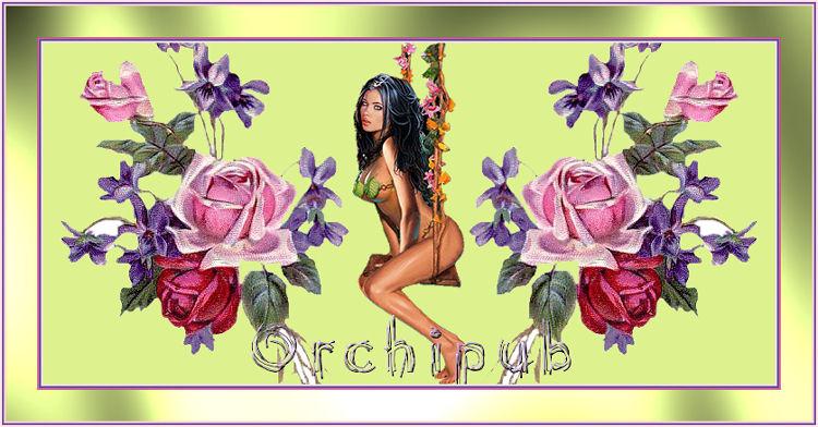 orchipub 0703271031013754424831