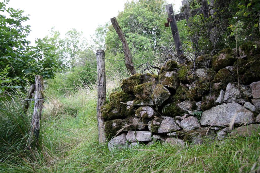 Aout 2007 - sud de l'Yonne, en bordure du Morvan 0708100644019673984714