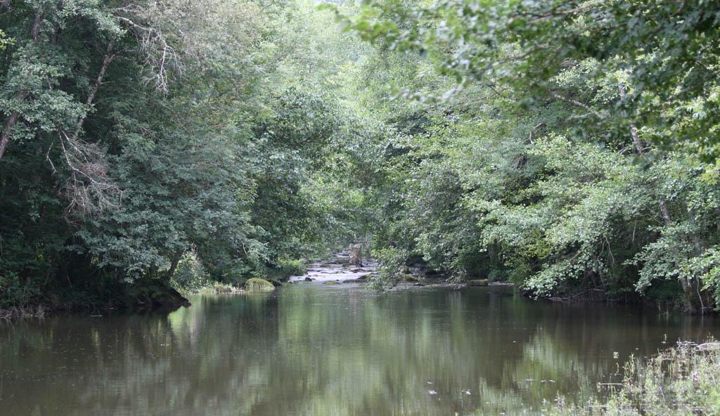 Aout 2007 - sud de l'Yonne, en bordure du Morvan 0708100644339673984715