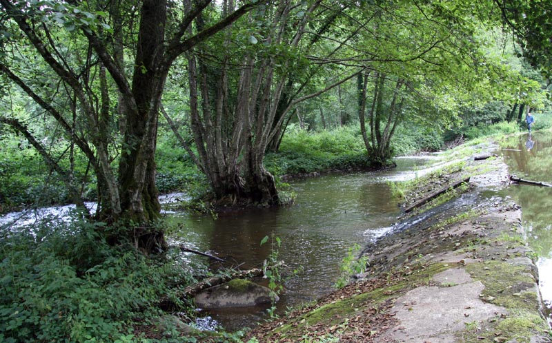 Aout 2007 - sud de l'Yonne, en bordure du Morvan 0708110852199673993465