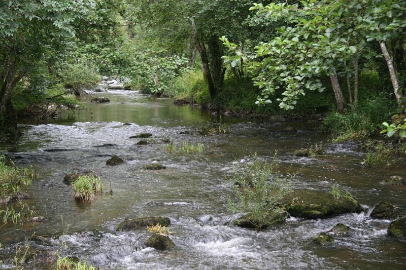 Aout 2007 - sud de l'Yonne, en bordure du Morvan 0708110854489673993474