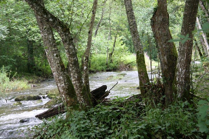 Aout 2007 - sud de l'Yonne, en bordure du Morvan 0708110855099673993476