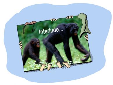 Quand je vous disais que l'adolescence, c'est le réveil des chimpanzés !