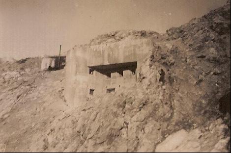 Fort et ouvrage du Janus 07110911211010991402136