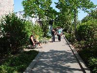 Petite balade bucolique à Paris découverte par Tarouilan Mini_0704220903132640501425