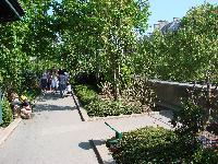 Petite balade bucolique à Paris découverte par Tarouilan Mini_0704220904072640501430