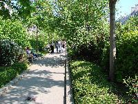 Petite balade bucolique à Paris découverte par Tarouilan Mini_0704220904582640501437