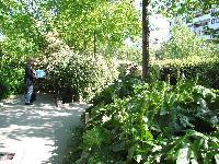 Petite balade bucolique à Paris découverte par Tarouilan Mini_0704220935342640501573