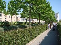 Petite balade bucolique à Paris découverte par Tarouilan Mini_0704220941302640501595