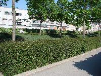 Petite balade bucolique à Paris découverte par Tarouilan Mini_0704220942162640501599