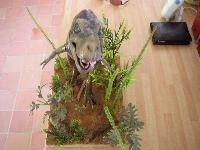 t-rex  jurassic park en kit vynil Mini_070803053205952289