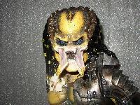 predator 1/3 kit thai - Page 2 Mini_0708240241541074612