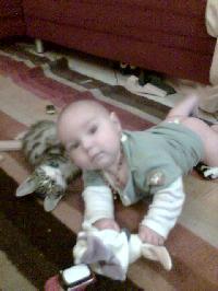 propreté d'un bébé chat Mini_0710060453001351305