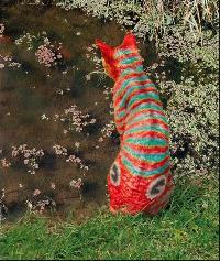 Les particularitées de votre chat... Mini_06041504183624509