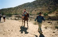 photos mon voyage en Jordanie, Petra, aman ETC......... Mini_0703190821312281402720