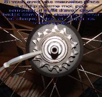Pignon de roue libre : dépose Mini_0703280156012640427288